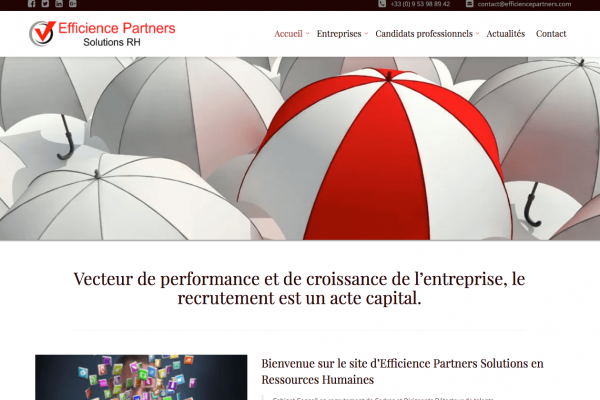Efficience Partners - simonfaure.com